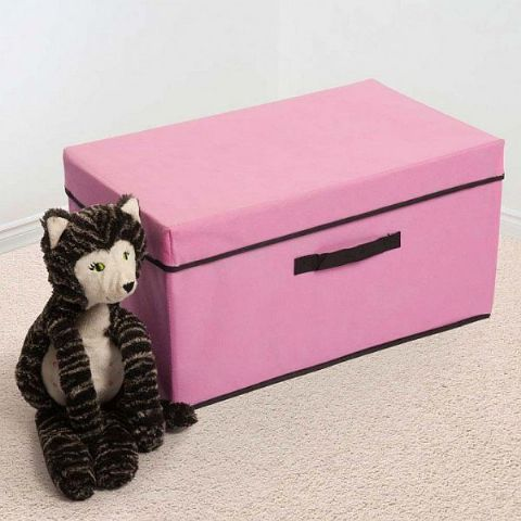 Girls Pink Toy Storage Box